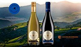 Новинка от LFE - линейка уникальных терруарных вин 360.