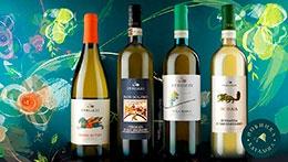 Вина из тосканского региона Верначча ди Сан Джиминьяно